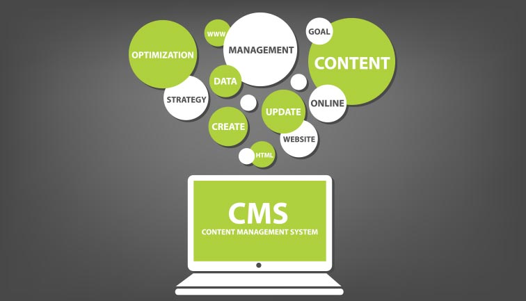 cms website development company in chennai
